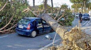 Vento, feriti e danni in Campania