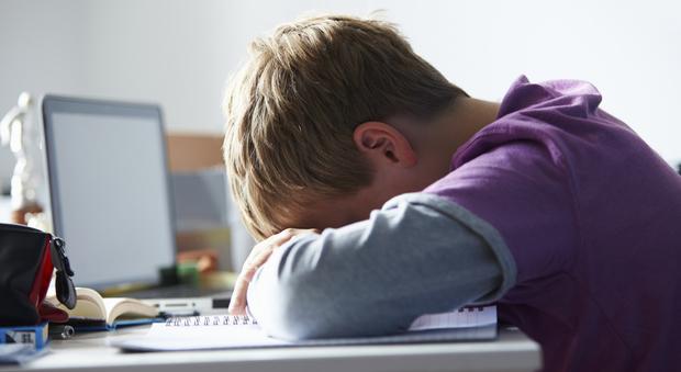 Bambini e internet, attenzione: anche a 5 anni vittime di cyberbullismo