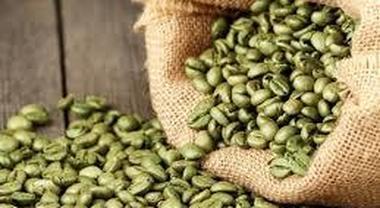 caffè verde all ingrosso europa