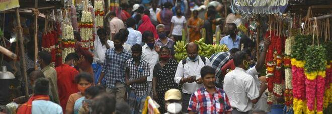 India, dopo fungo nero allarme per diagnosi fungo verde