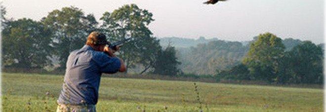 Strage di uccelli di una specie protetta: divieto di dimora per due cacciatori