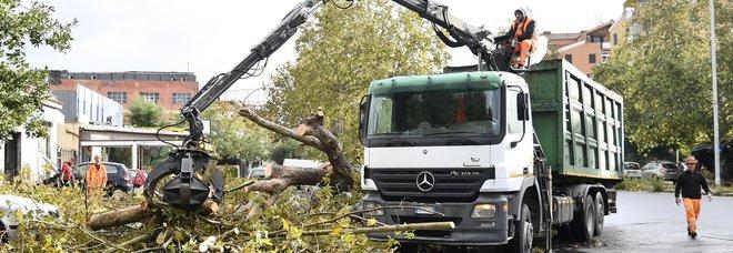 Roma, alberi caduti per il maltempo: chiusi 4 chilometri della via Tiberina