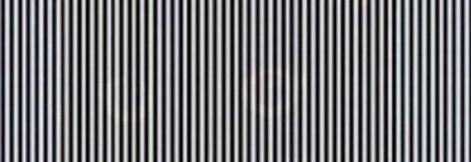 Dietro le linee si nasconde un'immagine: ecco come vederla. L'illusione ottica virale di Michelle Dickinson