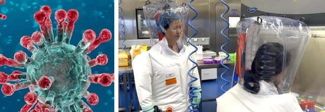 Covid, nuovo studio: «Abbiamo le prove, il coronavirus è stato creato in laboratorio»