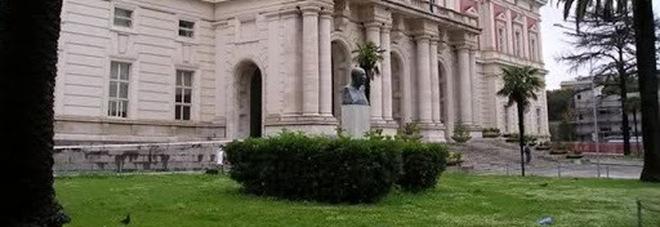 Da Ischia a Napoli, muore di Covid: c'è l'inchiesta. Il figlio: «Contagiata in ospedale, tre giorni in barella in mezzo ad altri ammalati»