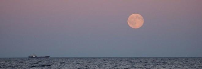 Venerdì sera arriva la luna rosa: perché si chiama così e cosa si vedrà