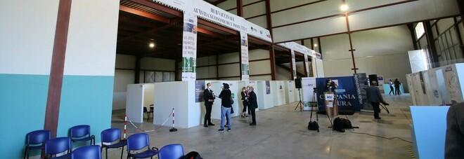 Vaccini Covid a Benevento, le imprese nuova frontiera
