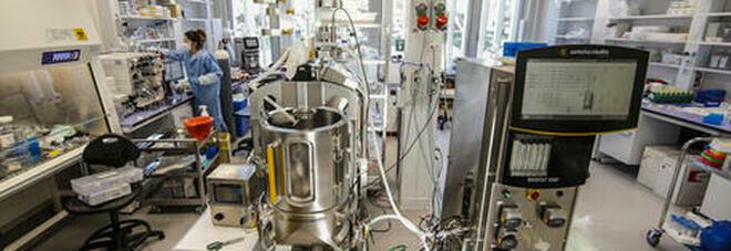 Vaccino Covid, all'ospedale Sant'Anna la fase di sperimentazione del ReiThera