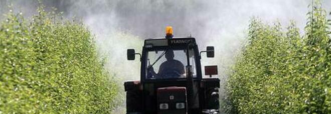 Tragedia sul lavoro: il trattore si ribalta, morto un giovane operaio. Lorenzo aveva 24 anni