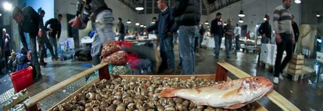 Racket al mercato del pesce di Pozzuoli con mitragliatrici e pistole, arrestato il boss fantasma