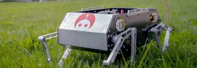 Doggo, il cane-robot della Stanford University