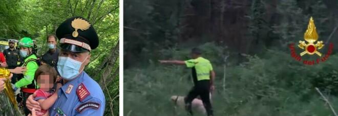 Nicola Tanturli, le 36 ore tra dirupi e animali: «I boschi sono casa sua soltanto questo lo ha salvato»
