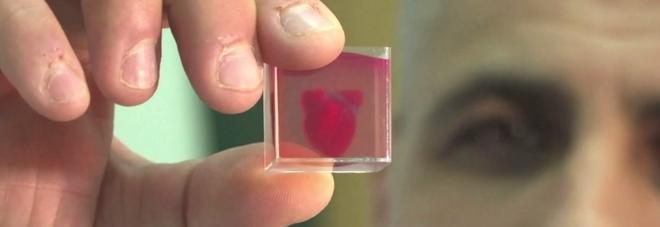 Gli scienziati dell'Università di Tel Aviv hanno presentato il primo mini cuore stampato in 3D