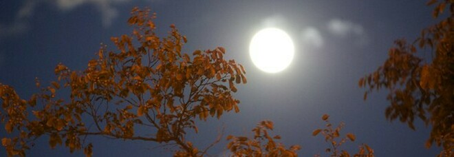 Finita l'estate, oggi più che mai. Alle 21.21 di oggi comincerà ufficialmente l'autunno