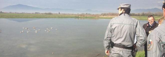 Blitz della forestale scoperto finto laghetto usato come for Laghetto per anatre