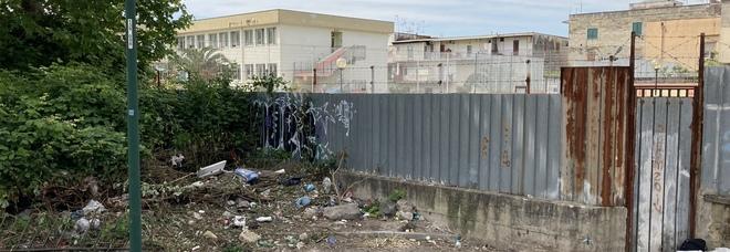 Napoli Est, degrado a San Giovanni: decine di topi a ridosso della scuola