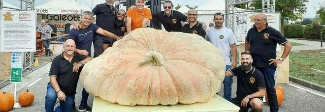 La zucca più grande del mondo è in Italia: pesa 1.226 kg, è record