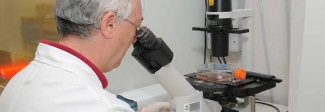 Sviluppata una sostanza che impedisce la formazione di metastasi