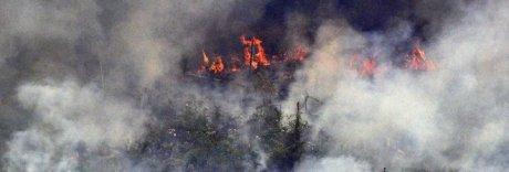 Amazzonia, Bolsonaro invia l'esercito per domare gli incendi