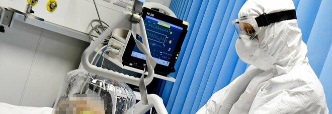 Docenze infermieristiche, l'Ordine invia diffida all'Ateneo Vanvitelli