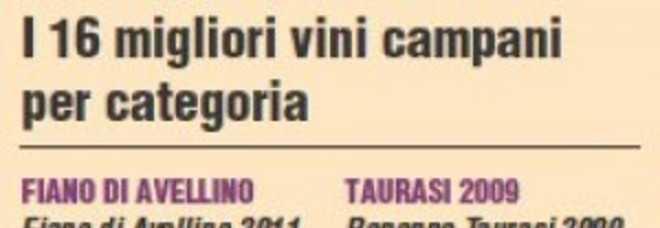 Grandi vini della Campania: i 16 vincitori delle top wine sul Mangia&Bevi in edicola