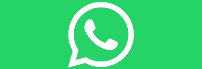 WhatsApp per Android, da novembre foto e video saranno eliminati: ecco come salvarli