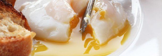Salmonella, negli Stati Uniti ritirate duecento milioni di uova