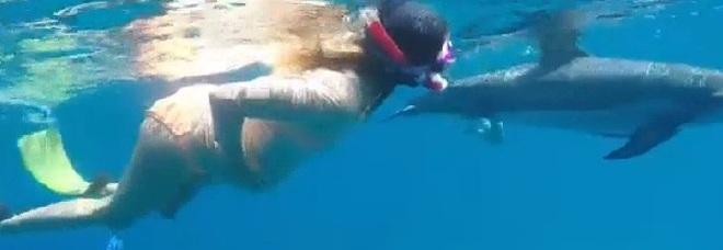 Delfino sesso video