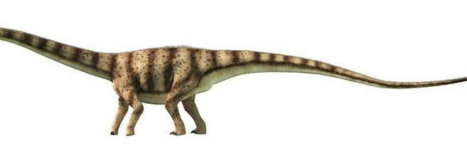 Dinosauri ridotti a zombie dal parassita preistorico: la scoperta eccezionale