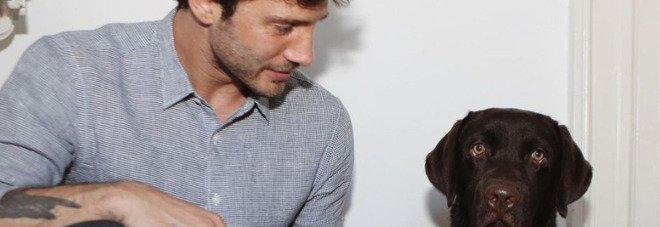 Stefano De Martino, la foto con il cane su Instagram. Ma i fan notano un dettaglio: «Sta con lei?»