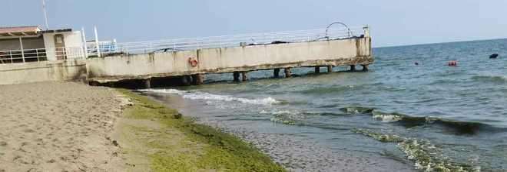 Mare torbido, mucillagine e alghe: bagnanti in fuga e lidi in crisi
