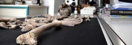Scheletro di bimbo trovato a Pompei: iniziate le prime analisi in laboratorio