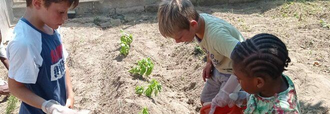 Procida con i piccoli migranti per promuovere la tutela dell'ambiente