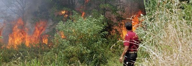 Incendi in Calabria, 78enne muore nel tentativo di spegnere un rogo