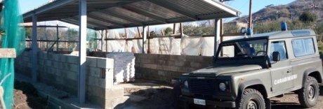 Abusi edilizi nel Parco Vesuvio,  sequestrati due capannoni
