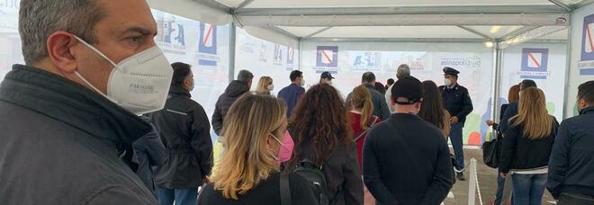 De Magistris candidato in Calabria: «No al parco eolico nei vigneti di Cirò»