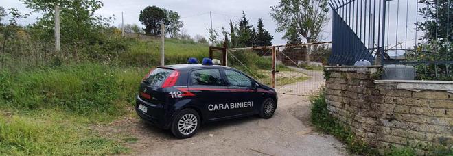 Napoli: occupa abusivamente un terreno di 7mila metri quadri nell'area protetta, sequestro e denuncia