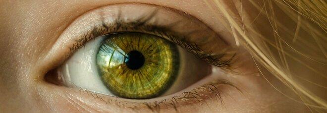 Colore degli occhi, nuova scoperta: sono 50 i geni a determinarlo e non due