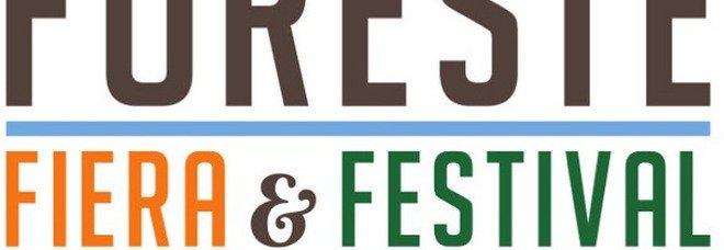 Veneto, via a Fiere & Festival delle foreste: dal 10 settembre a Belluno il focus sull'ambiente