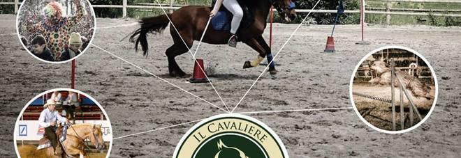 A Napoli Cani, cavalli, sport e allegria: ad Agnano festa doc a quattrozampe