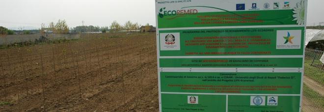Terra dei fuochi, la discarica del clan affidata alla facoltà di Agraria dell'Università Federico II