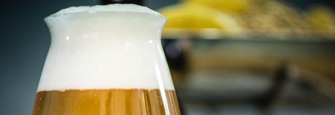 Birra al luppolo, antichemioterapico naturale, lo conferma una ricerca