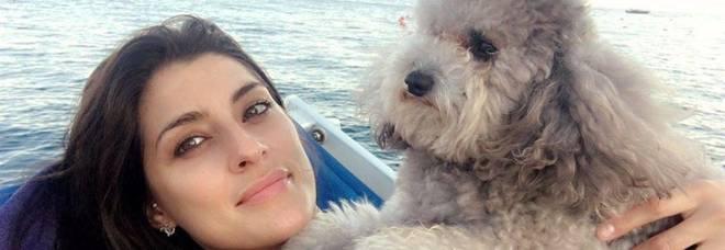 Elisa Isoardi promuove il suo barboncino Zenit a conduttore alla Prova del cuoco: «E punto alla Ballando con le stelle»