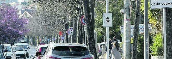 Pescara, 15 mila multe in un mese: rivolta contro l'autovelox (e il sindaco rischia il posto)