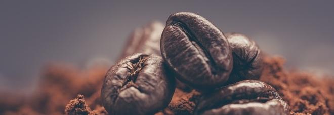 Dal caffé un aiuto contro il Parkinson: rallenta il declino cerebrale