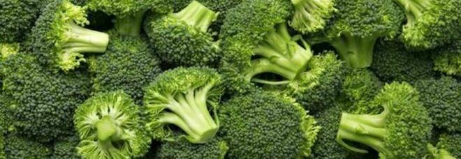 Alimentazione, perchè tanti bambini odiano i broccoli? Lo studio