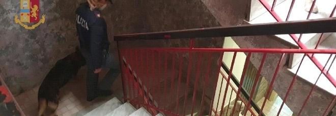 Blitz nel bunker della droga, via porte e recinzioni abusive