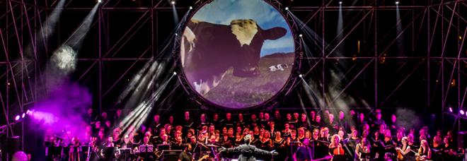 Musica, Pink Floyd Legend a Roma all'Auditorium parco della musica