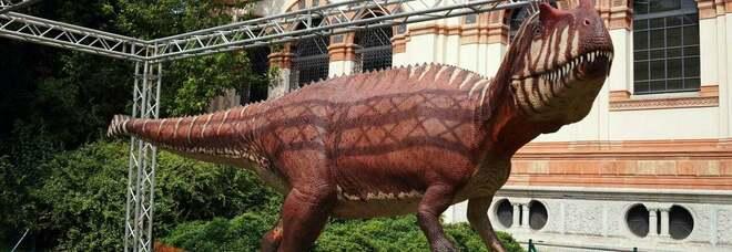Milano, un dinosauro ai Giardini Montanelli. Da non crederci: al Museo arriva un Saltriovenator di 8 metri e 2 tonnellate di peso