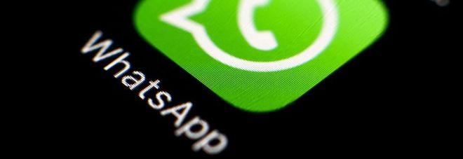 WhatsApp, ecco l'ultima novità: chat in evidenza per i nostri contatti preferiti